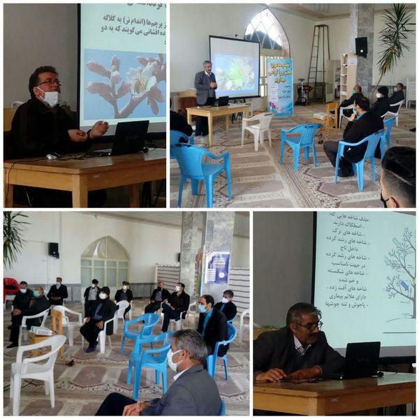 برگزاری کلاس آموزشی گرده افشانی و هرس درختان در شهر بن