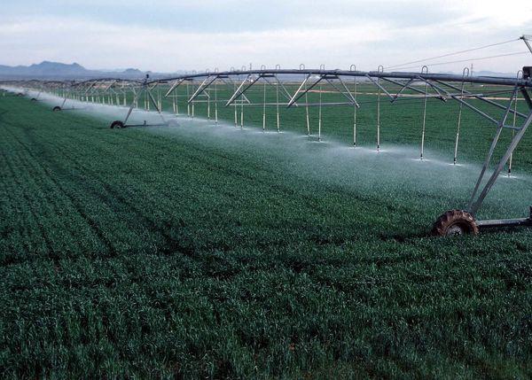 صرفه جویی سالانه ۷.۹ میلیارد متر مکعب آب مصرفی