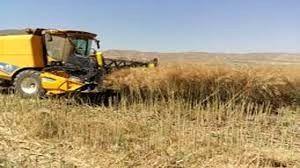 ورود کمباینهای بدون کارت معاینه فنی به مزارع ممنوع است