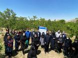 بازدید از پروژه مشترک ایجاد سایت باغچه های خانگی زنان روستایی دراستان آذربایجان شرقی