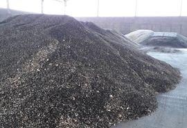 آغاز خرید مباشرتی تضمینی دانه روغنی آفتابگردان در خوزستان