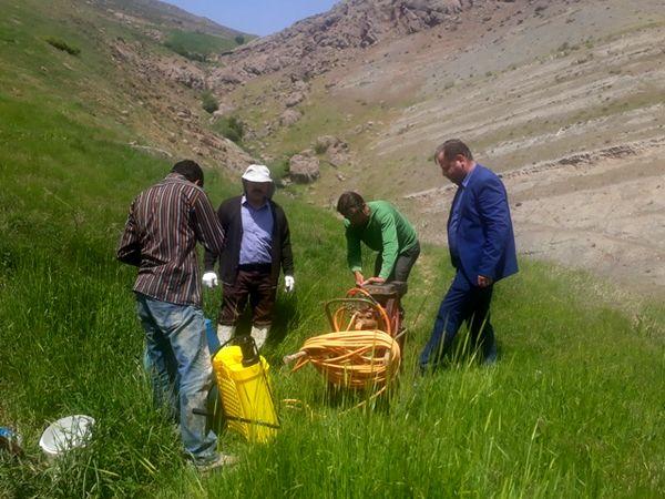 پایش مزارع وکنترل و مبارزه با ملخ بومی البرز