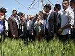 آغاز بهرهبرداری از ۱۱۲۰ هکتار سامانه نوین آبیاری در زنجان با حضور معاون رییس جمهور