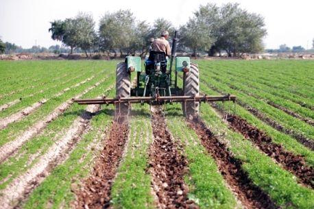 اشتغالزایی برای دو هزار و 400 نفر در بخش کشاورزی همدان
