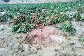 ۱۰٥ میلیارد و ۳۰۰ میلیون تومان به پروژههای آب و خاک استان لرستان اختصاص یافت