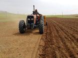 ۳۲ هزار هکتار از مزارع کشاورزی استان قزوین به زیر کشت جو میرود