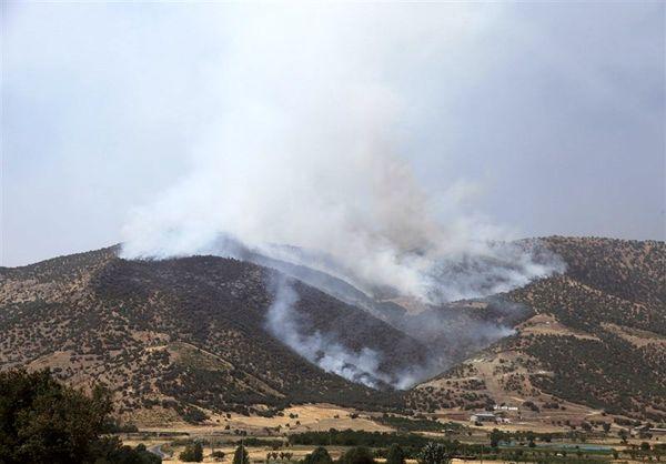 مهار آتش سوزی در جنگل های مریوان