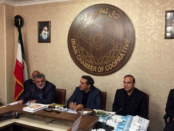 کشت فراسرزمینی ایران در وسعت 300 هزار هکتار