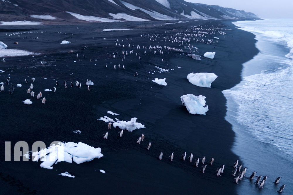 تغییر اقلیمی