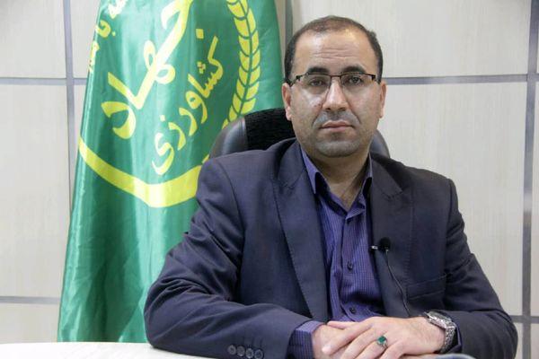 صدور پیام رییس سازمان جهاد کشاورزی لرستان به مناسبت هفته بسیج