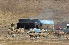 سوخت اختصاصی به عشایر خراسان شمالی کفاف این قشر از جامعه را نمیدهد