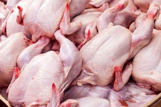 عرضه گسترده مرغ در شیراز
