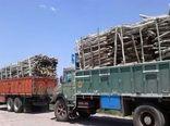 کشف و ضبط محموله یک و نیم تنی چوب غیرمجاز در شهرستان بندرعباس