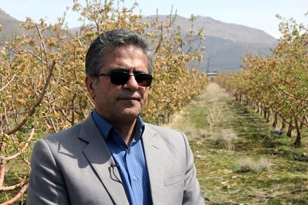 تجهیز 65 درصد از اراضی کشاورزی استان به سامانه های نوین آبیاری