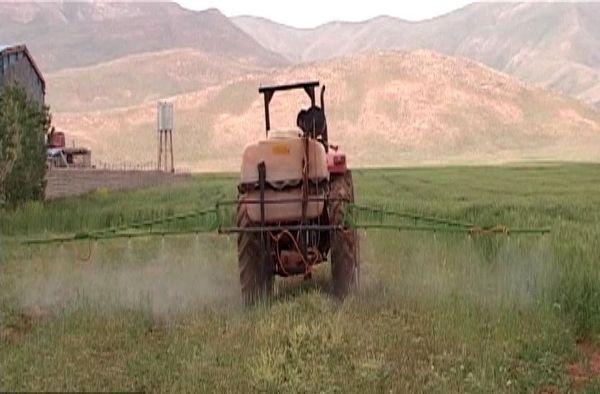 مبارزه شیمیایی با علف هرز در فریدونشهر