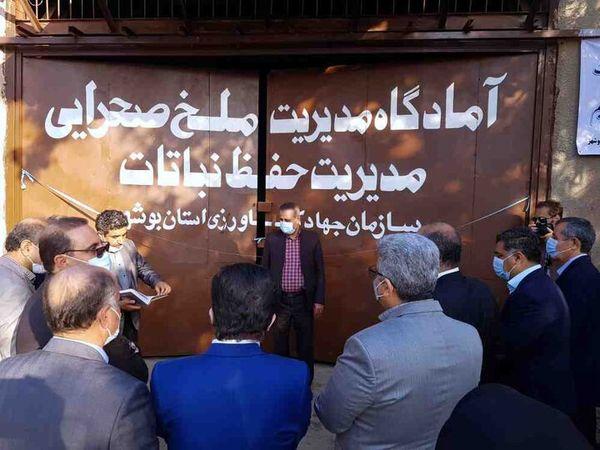آمادگاه مدیریت ملخ صحرایی در بوشهر افتتاح شد