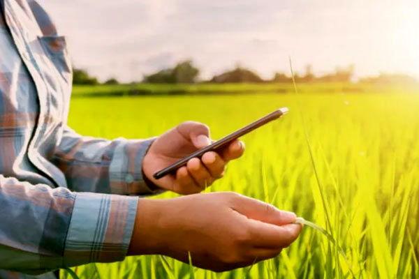 کاربرد اپلیکشنها در کشاورزی هوشمند