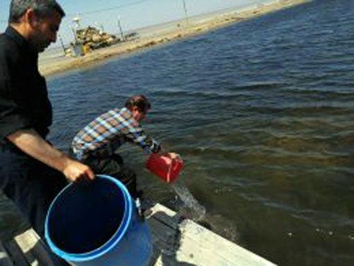 کشت سیست آرتمیای دریاچه ارومیه به منظور حفظ ذخائر ژنتیکی در جهت پایداری تولید