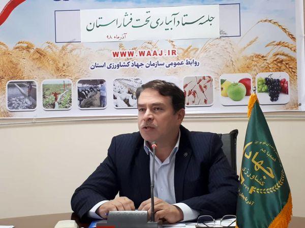 63 هزار و 438 هکتار از اراضی کشاورزی آذربایجان غربی به سیستم های آبیاری نوین تجهیز شد