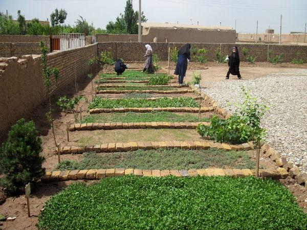 2400 نفر- روز دوره  فنی و حرفهای برای  بهره برداران بخش کشاورزی  قزوین برگزار شد