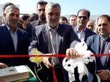 افتتاح گلخانه گل رز در بویراحمد توسط وزیر جهاد کشاورزی