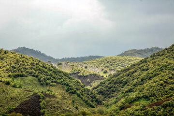 خراسان شمالی جزو ۱۰ استان دارای صندوق حمایت از توسعه منابع طبیعی است