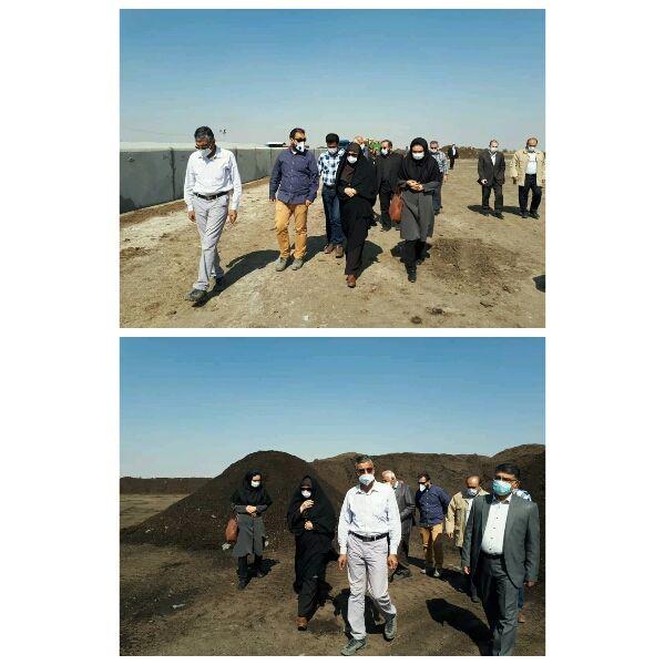 بازدید رئیس سازمان جهادکشاورزی استان قزوین از یک واحد کشت و صنعت در شهرستان بوئین زهرا