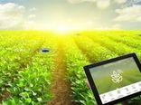 تاثیر مثبت استارت آپهای کشاورزی بر تولید و عرضه محصولات کشاورزی