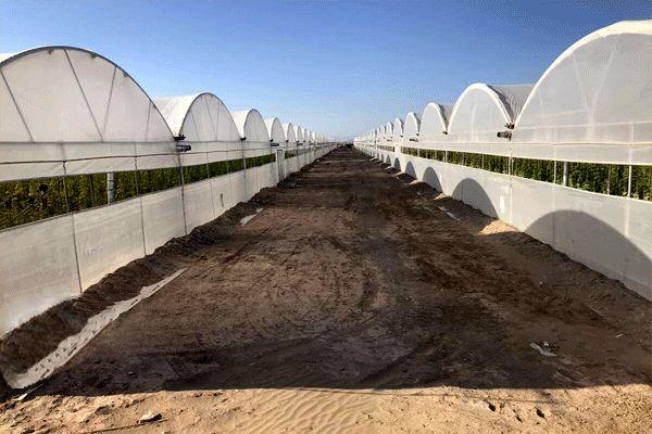 ضرورت رفع موانع قانونی برای توسعه گسترده شهرکهای کشاورزی