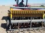کشاورزان شهرستان آوج در سایت الگویی ترویجی کلزا با چگونگی افزایش عملکرد محصول آشنا شدند