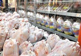 ذخیرهسازی 360 تن مرغ منجمد در چهارمحال و بختیاری