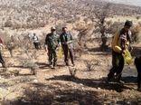جنگل کاری در عرصه های منابع طبیعی شهرستان مرودشت