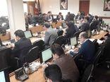 امسال ۲۲۰ هکتار به وسعت گلخانههای استان تهران افزوده شد