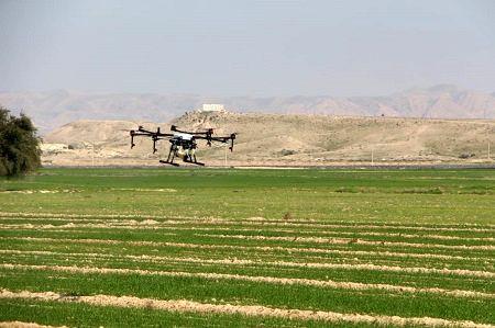 پهباد سمپاش در مزارع بخش جویم لارستان به پرواز درآمد