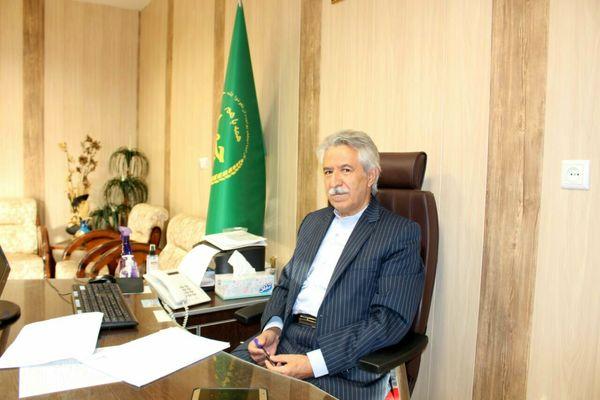 پیش بینی برداشت 2500 تن دانه روغنی کلزا در اراضی شهرستان کرمانشاه