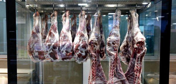 در بازه زمانی ۷ ساله؛ تولید گوشت قرمز در اصفهان ۱۵ درصد بیشتر شد