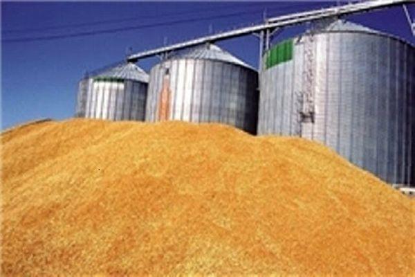 ۹۱ سیلوی نگهداری گندم در کردستان فعال است