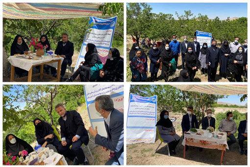 برگزاری دوره های آموزشی بهبود تغذیه و ایجاد باغچه های خانگی درشهرستان اسکو