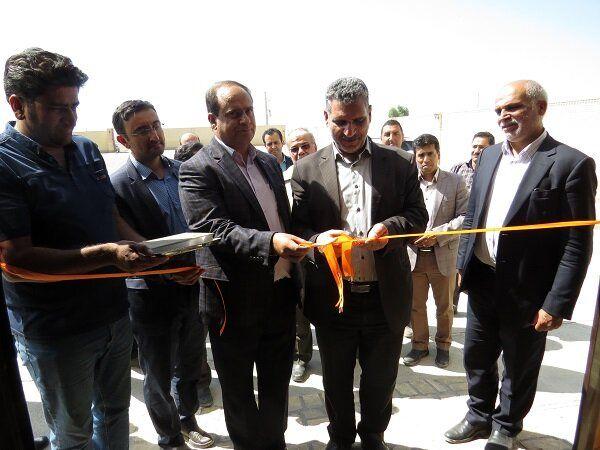 استان یزد با ۴۰۰ مرکز، رتبه نخست پرورش اسب عرب کشور را دارد