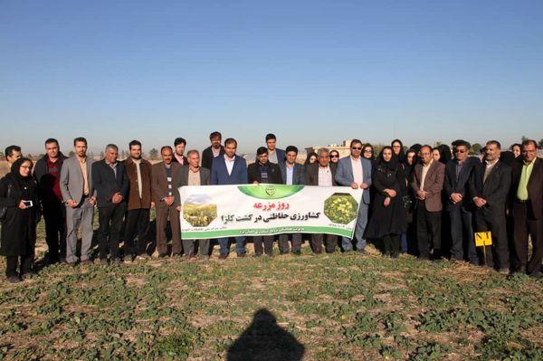 کشاورزی حفاظتی عامل پایداری خاک