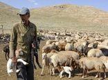 عشایر خراسان شمالی کوچ پاییزه خود را آغاز کردند