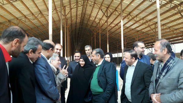 استاندار قزوین از مراحل اجرایی بزرگترین مرکز پرورش گوسفند کشور در بویئن زهرا بازدید کرد