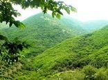 پیشنهاد اصلاح قانون اصلاح ماده (۳۳) قانون حفاظت و بهره برداری از جنگل ها و مراتع