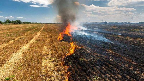 کشاورزان مراقب وقوع آتشسوزی در مزارع و اراضی کشاورزی باشند