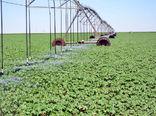 اجرای سیستمهای آبیاری تحت فشار در 66 هزارهکتار از اراضی کشاورزی آذربایجان شرقی