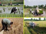 کشاورزی دیروز، کشاورزی امروز