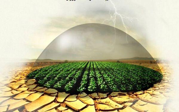 دام، پیشتاز بیمه بخش کشاورزی در کردستان است