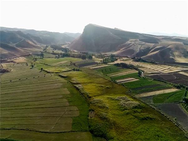 پیشرفت فیزیکی پروژه آبیاری تحت فشار روستای گلابرسفلی شهرستان ایجرود