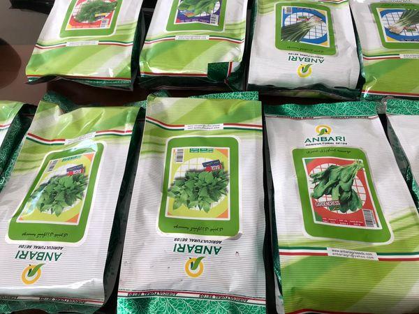 طرح خرید و توزیع بذر سبزیجات در بین زنان روستایی استان قزوین اجرا شد