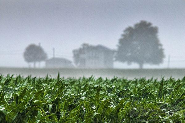 هشدارهای هواشناسی به کشاورزان